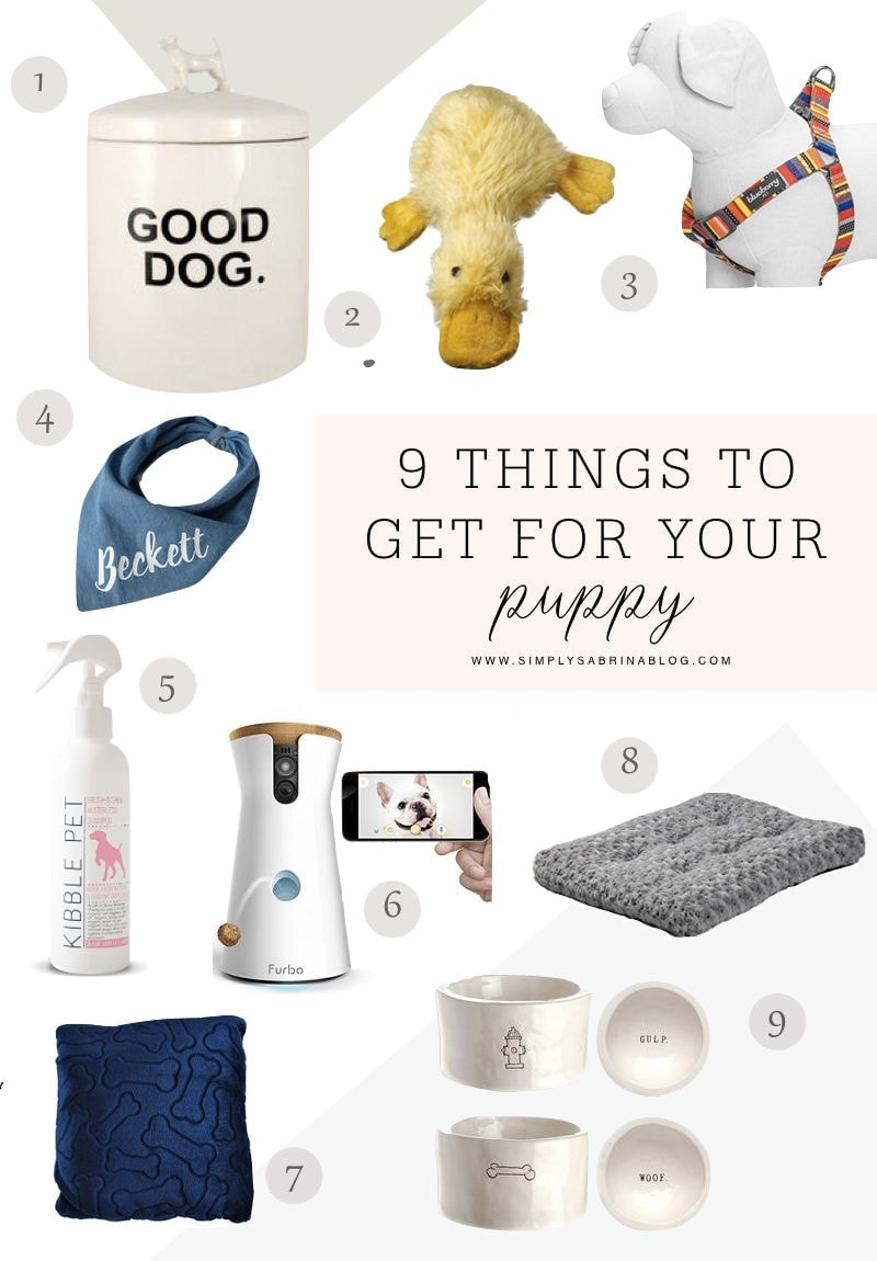 9 THINGS FOR A NEW PUPPY